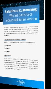 Unser Whitepaper: Salesforce Customizing