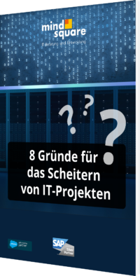 Unser Whitepaper zu 8 Gründe für das Scheitern von IT-Projekten