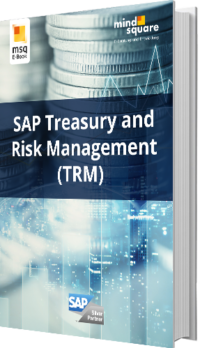 Unser E-Book zum Thema SAP Treasury and Risk Management