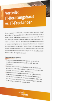 Vorteile: IT-Beratungshaus vs. IT-Freelancer