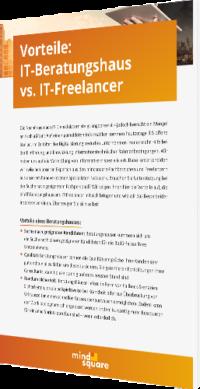 IT-Beratungshaus vs Freelancer
