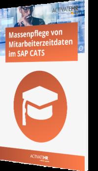 Massenpflege von Mitarbeiterzeitdaten im SAP CATS