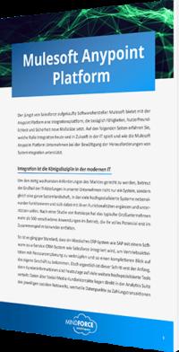 Mulesoft Anypoint Platform