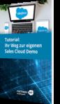Unser Tutorial: Ihr Weg zur eigenen Sales Cloud Demo