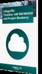 Infografik: Timeline SAP BW/4HANA Project Blueberry
