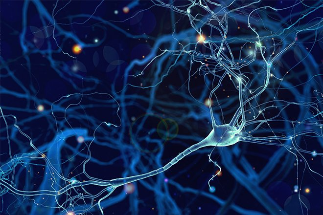 Unser Knowhow zum Thema Convolutional Neural Network