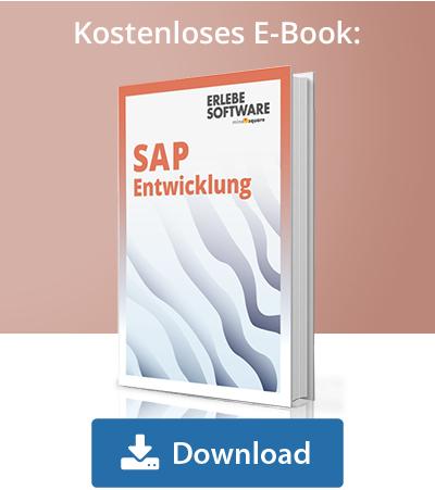 E-Book SAP Entwicklung