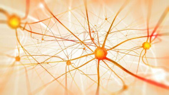 6 Missverständnisse über Künstliche Intelligenz.