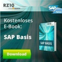 SAP Basis-E-Book