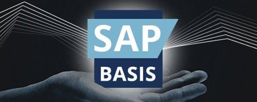 SAP Basis-kategorie