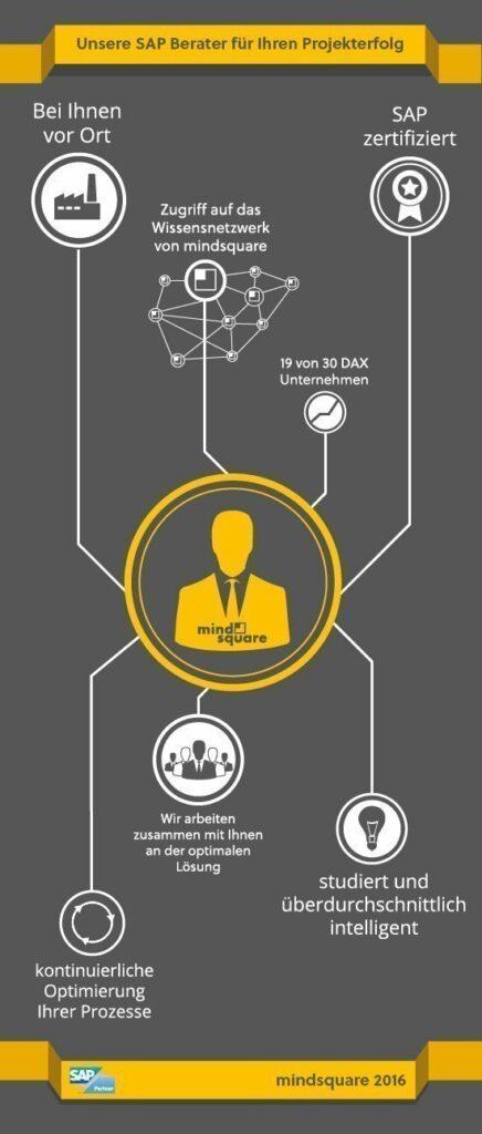 SAP Berater Infografik