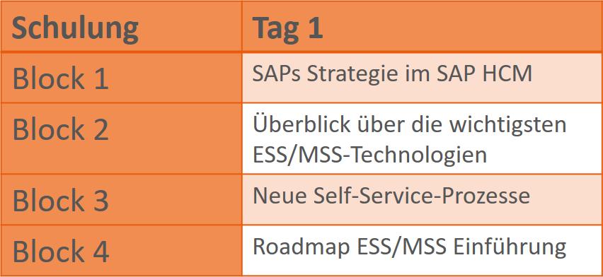 SAP ESS_MSS Schulung Überblick