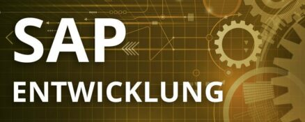 SAP Entwicklung Schulung