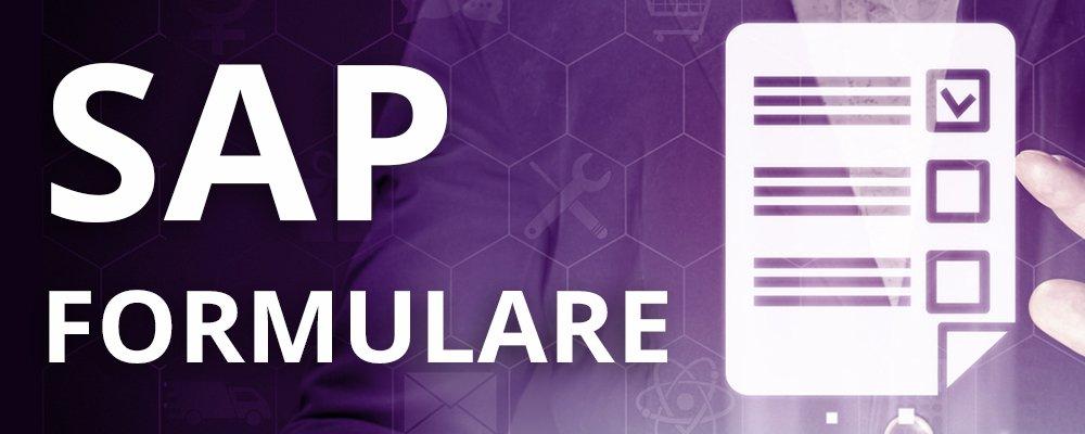 SAP Formulare Schulung