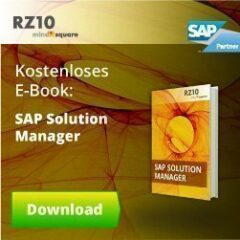 SAP Solution Manager-E-Book