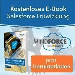 ebook-salesforce entwicklung