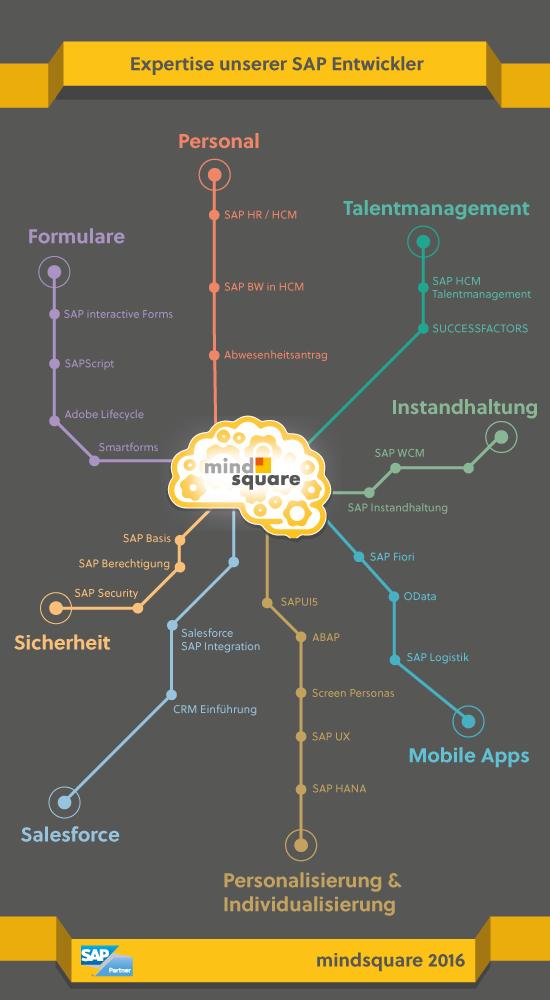Expertise der SAP Entwickler von mindsquare