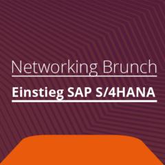 Networking Brunch