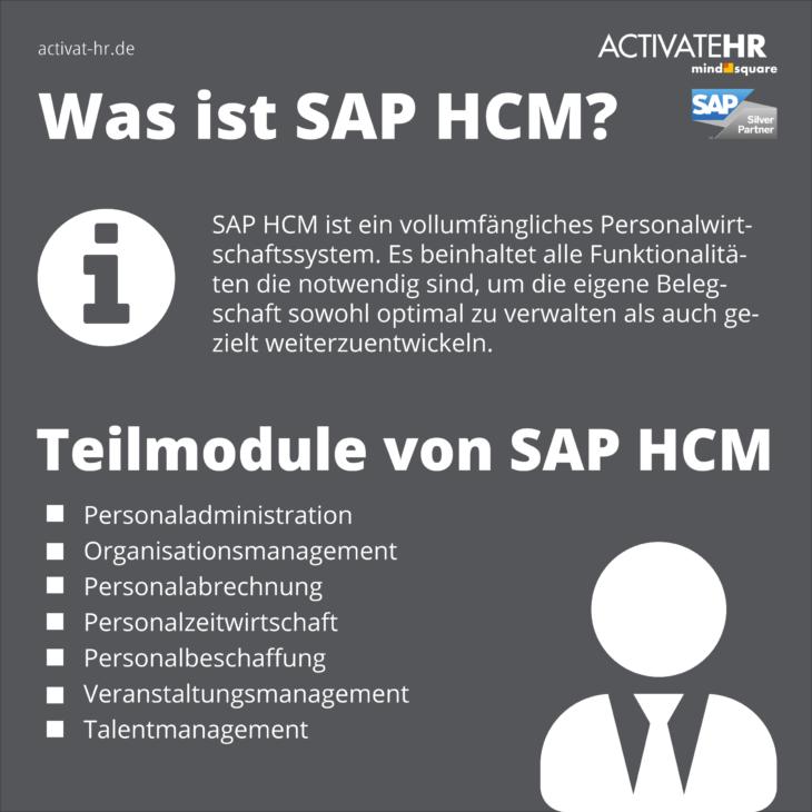 SAP HCM Informationen