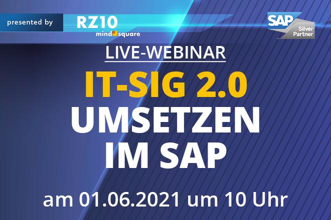IT-SiG 2.0 umsetzen im SAP
