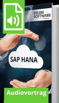 Unser Audiovortrag zum Thema SAP HANA