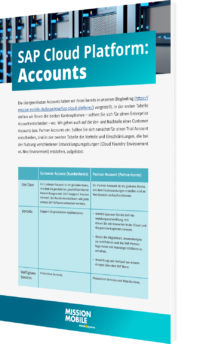Unser Whitepaper zur SAP Cloud Platform: Accounts