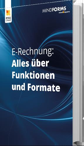 Unser E-Book zu E-Rechnung Alles über Funktionen und Formate