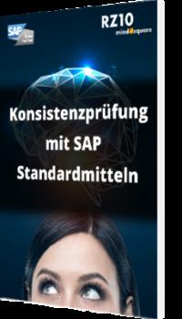 Konsistenzprüfung mit SAP Standardmitteln
