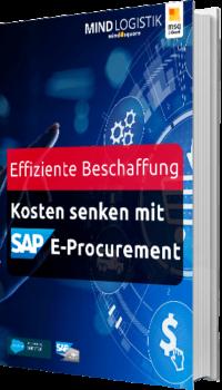 E-Book: Effiziente Beschaffung: Kosten im Einkauf senken mit E-Procurement