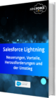 Unser E-Book zum Thema Salesforce Lightning