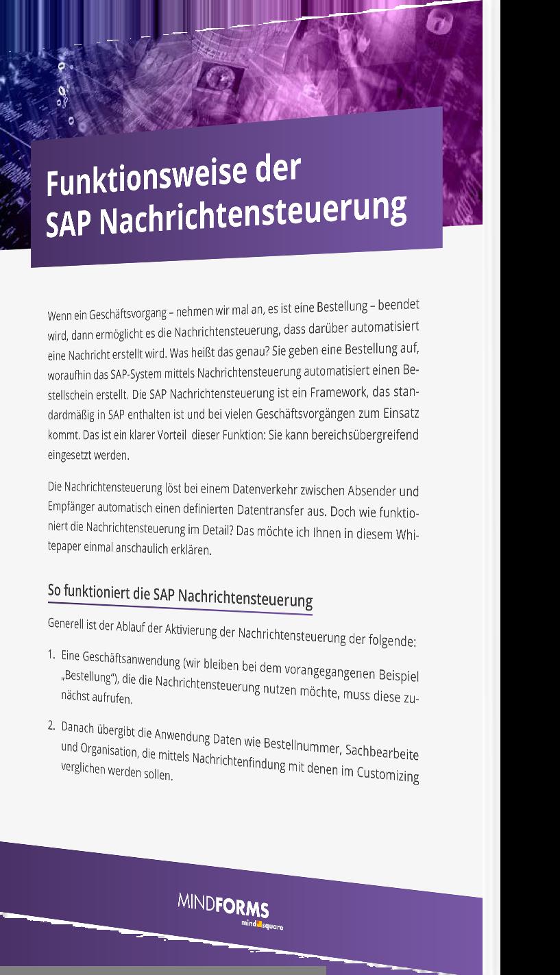 Unser Whitepaper zu den Funktionsweisen der SAP Nachrichtensteuerung