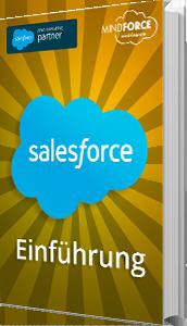 Unser E-Book zum Thema Salesforce Einführung