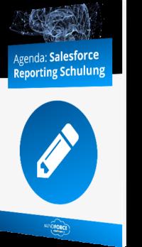 Unser Whitepaper zur Salesforce Reporting Schulung