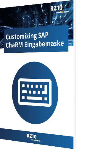 Customizing SAP ChaRM Eingabemaske