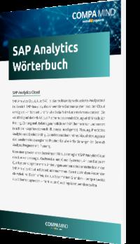 Unser Whitepaper zum SAP Analytics Wörterbuch
