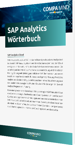 Buchgrafik-groß_SAP Analytics Wörterbuch