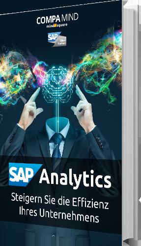Buchgrafik-groß_SAP Analytics