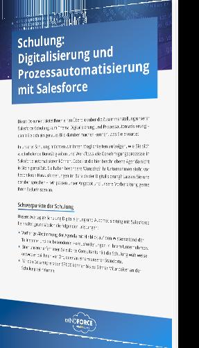 Buchgrafik-groß_Schulung Digitalisierung und  Prozessautomatisierung mit Salesforce