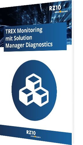 TREX Monitoring mit Solution Manager Diagnostics