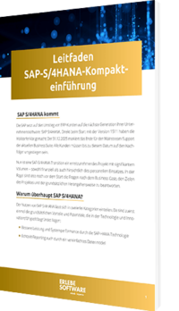 SAP S/4HANA Kompakteinführung