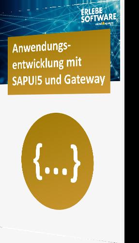 Vergleich sapui5 und gateway