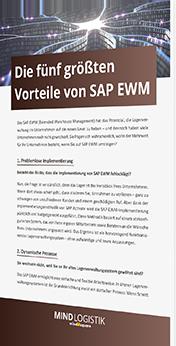 die-fünf-groessten-vorteile-von-sap-ewm