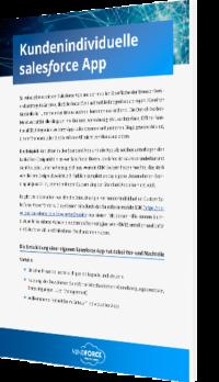 Kundenindividuelle Salesforce App