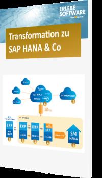 SAP HANA Infografik