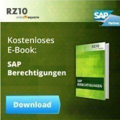 SAP Berechtigungen-E-Book