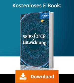 Salesforce Entwicklung