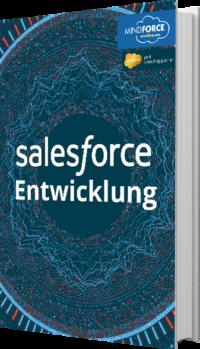 Unser E-Book zur Salesforce Entwicklung