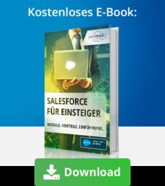 E-Book Salesforce für Einsteiger