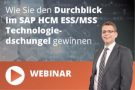 Durchblick in SAP HCM
