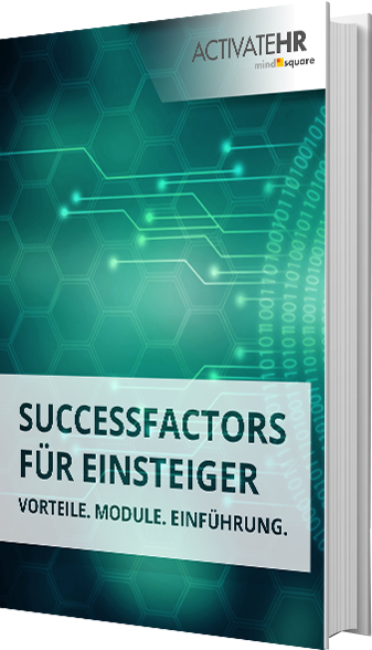 E-Book SuccessFactors fuer Einsteiger